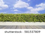 old wooden decking and plant... | Shutterstock . vector #581537809
