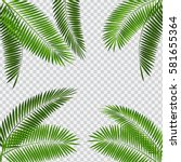 palm leaf vector illustration... | Shutterstock .eps vector #581655364