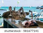 santa cruz island  galapagos ...   Shutterstock . vector #581677141