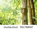 Bird's Nest  Nest Box  Fresh...