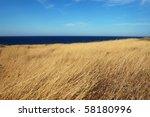 Yellow Dry Grass Field  Blue...
