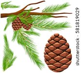 pinecone on the branch... | Shutterstock .eps vector #581819029