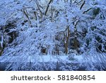 winter hiraizumi in chuson ji... | Shutterstock . vector #581840854