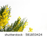 women s day background   Shutterstock . vector #581853424