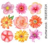 watercolor set of different... | Shutterstock . vector #581855314