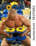 fitness   powerful muscular... | Shutterstock . vector #58195882