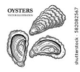 oysters engraving vector... | Shutterstock .eps vector #582082567