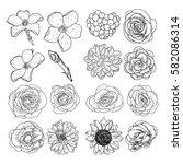 vector set of flowers  black... | Shutterstock .eps vector #582086314