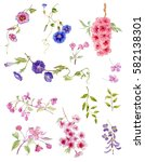 watercolor flowers. watercolor... | Shutterstock . vector #582138301