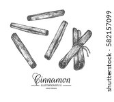 set of cinnamon. hand drawn...   Shutterstock .eps vector #582157099
