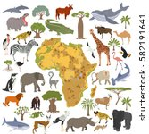 flat africa flora and fauna map ... | Shutterstock .eps vector #582191641