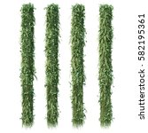3d rendering of vertical garden   Shutterstock . vector #582195361