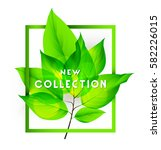 new collection on with fresh... | Shutterstock .eps vector #582226015