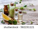 organic cosmetics with lemon... | Shutterstock . vector #582231121