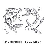 stylized fishes. ornamental... | Shutterstock .eps vector #582242587