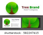 tree eco green organic plant... | Shutterstock .eps vector #582247615