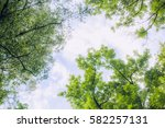 background with natural texture | Shutterstock . vector #582257131