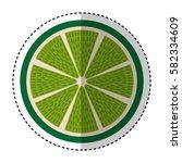 fresh fruit slice isolated icon   Shutterstock .eps vector #582334609