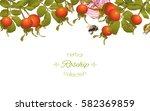 vector rose hip horizontal...   Shutterstock .eps vector #582369859