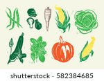 woodcut vegetables | Shutterstock .eps vector #582384685