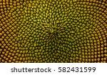 Textures Sunflower Close Up...