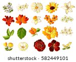 flower set | Shutterstock .eps vector #582449101
