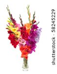 Bouquet Of Colored Gladioli...