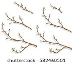 spring tree branch with buds... | Shutterstock .eps vector #582460501