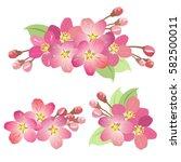 apple tree blossoms. set of... | Shutterstock .eps vector #582500011