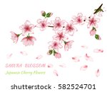 blooming branch vector with... | Shutterstock .eps vector #582524701