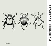 some insects | Shutterstock .eps vector #582529261
