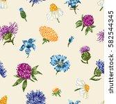 inflorescence of wild flowers | Shutterstock .eps vector #582544345