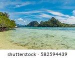 tropical sea landscape. beach... | Shutterstock . vector #582594439