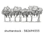 hand drawn vector illustration... | Shutterstock .eps vector #582694555
