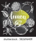 ink hand drawn lemon set with... | Shutterstock .eps vector #582696409