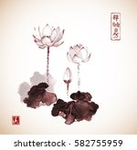 lotus flowers hand drawn with... | Shutterstock .eps vector #582755959
