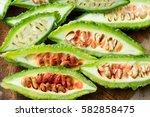 bitter melon  bitter gourd | Shutterstock . vector #582858475
