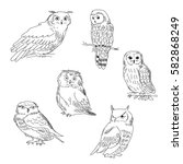 collection of images of a owls... | Shutterstock . vector #582868249