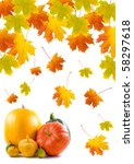 maple leaves and pumpkins on a... | Shutterstock . vector #58297618