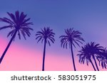 row of tropic palm trees... | Shutterstock . vector #583051975