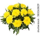 Bouquet Of Flowers  Bouquet Of...