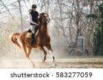 Stock photo young pretty girl riding a horse 583277059