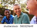mature male friends socializing ...   Shutterstock . vector #583329649