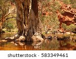 The Finke River Flowing Throug...