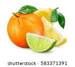 citrus fruit. composition with... | Shutterstock . vector #583371391