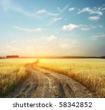Road In Field And Blue Sky Wit...