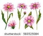 watercolor set of flowers  hand ... | Shutterstock . vector #583525084