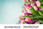 Spring Flowers Banner   Bunch...
