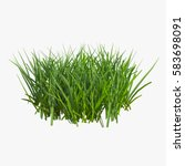 Grass Isolated On White. 3d...
