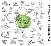 Vegetables Vector Set. Hand...